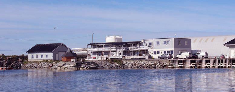 Torsvåg Havfiske (Vannøya)